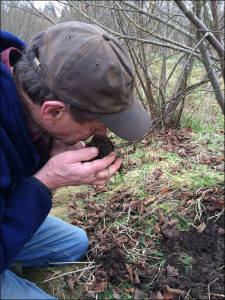 Checking for Truffle Maturity